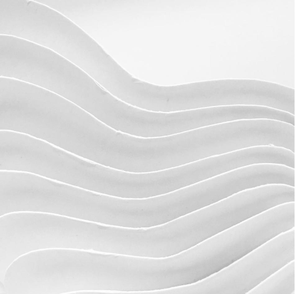 De rytmiske og gjentakende, rene linjene skaper en bevegelse og vekst. Dette i form av en formskisse i hvit papp.